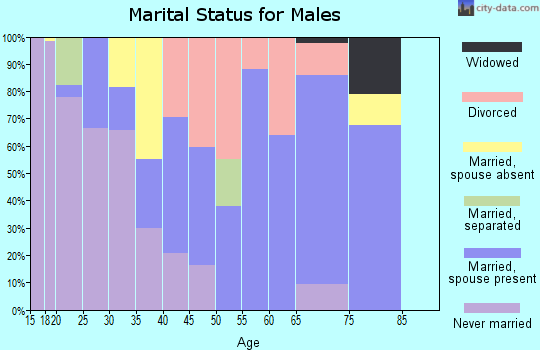 Zip code 81624 marital status for males