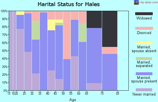 Zip code 81652 marital status for males
