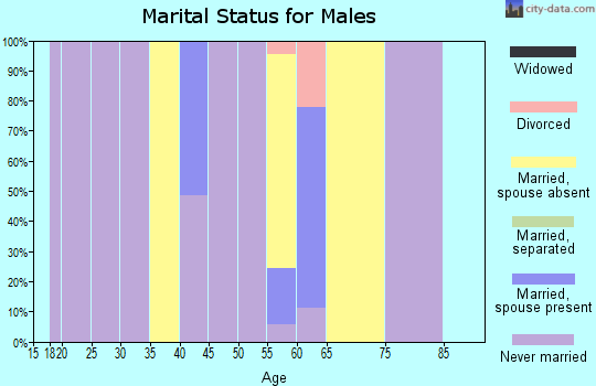 Zip code 82190 marital status for males