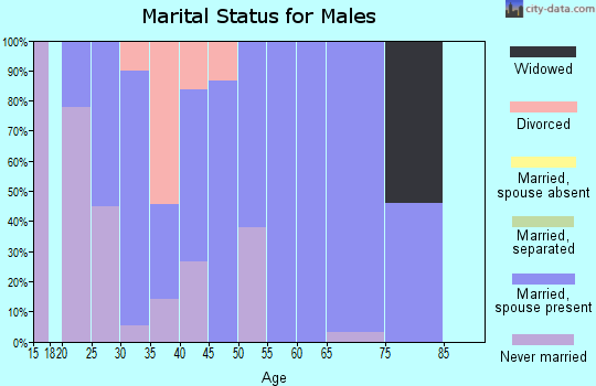Zip code 82939 marital status for males