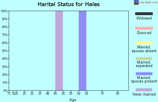 Zip code 82943 marital status for males