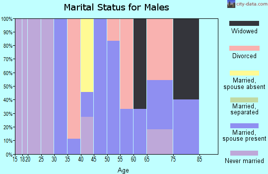 Zip code 82945 marital status for males