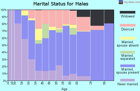 Zip code 83204 marital status for males