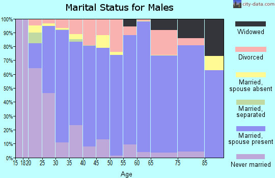 Zip code 83221 marital status for males
