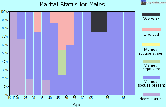 Zip code 83320 marital status for males