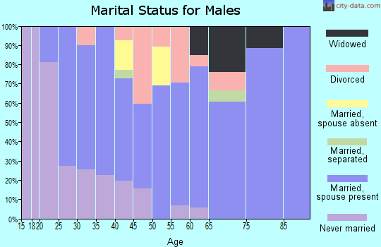 Zip code 83334 marital status for males