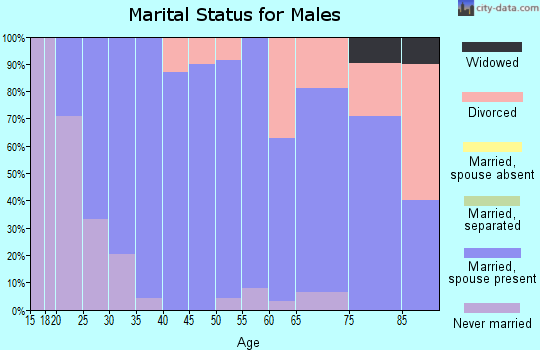 Zip code 83335 marital status for males