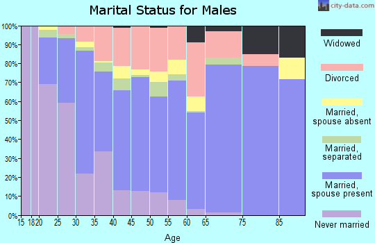 Zip code 83402 marital status for males