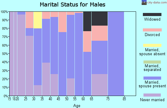 Zip code 83455 marital status for males