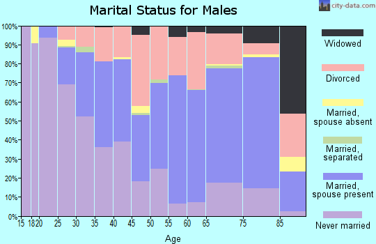 Zip code 83705 marital status for males