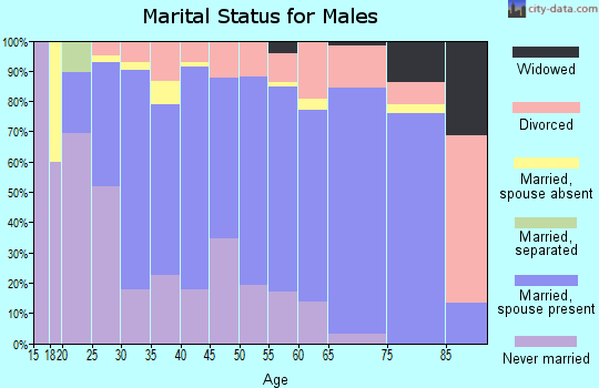 Zip code 83714 marital status for males