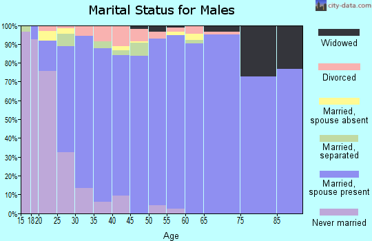 Zip code 84025 marital status for males