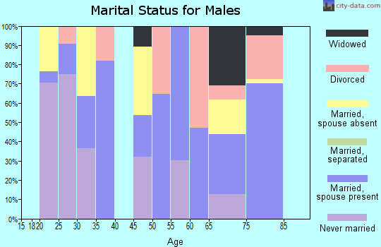 Zip code 84046 marital status for males