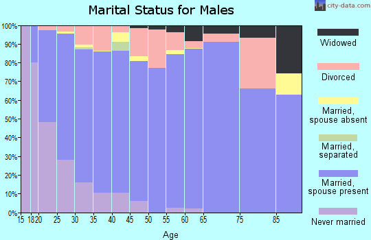 Zip code 84066 marital status for males
