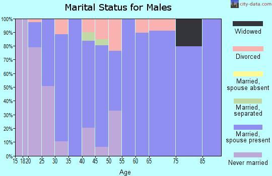 Zip code 84315 marital status for males