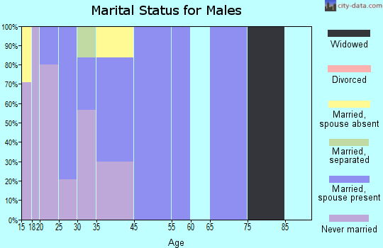 Zip code 84510 marital status for males
