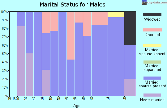 Zip code 84643 marital status for males