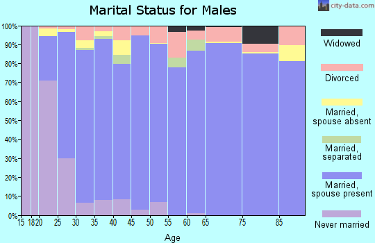 Zip code 84651 marital status for males
