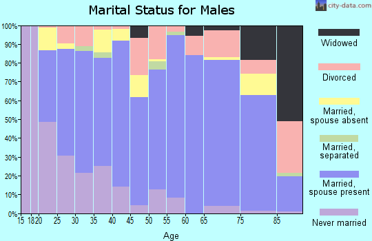 Zip code 84701 marital status for males