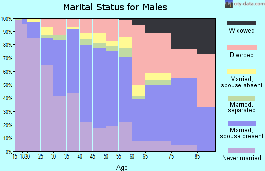 Zip code 85017 marital status for males