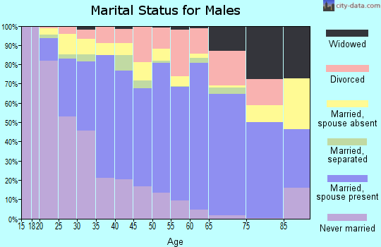 Zip code 85033 marital status for males