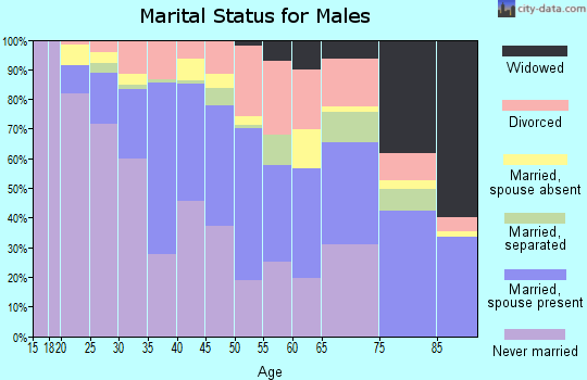 Zip code 85040 marital status for males