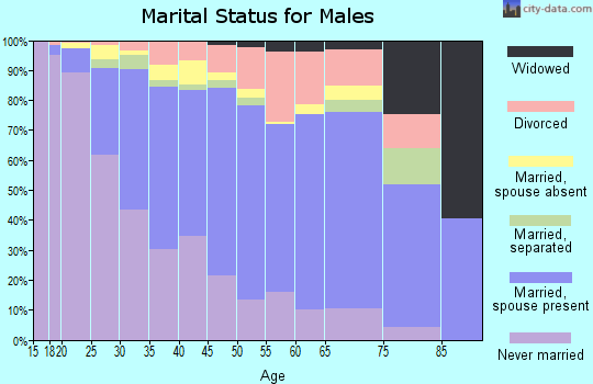 Zip code 85041 marital status for males