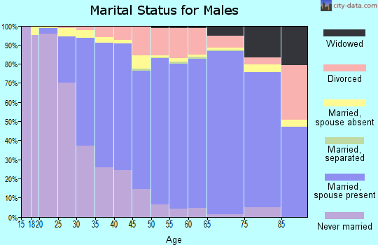 Zip code 85254 marital status for males