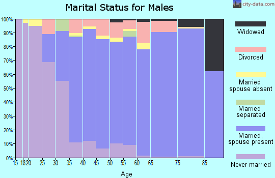 Zip code 85255 marital status for males
