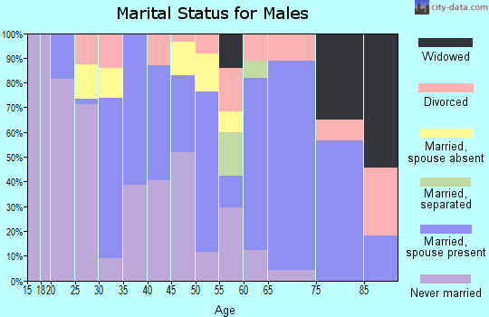 Zip code 85256 marital status for males