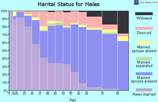 Zip code 85282 marital status for males