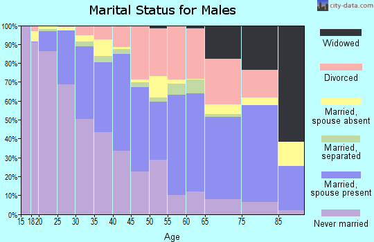 Zip code 85301 marital status for males
