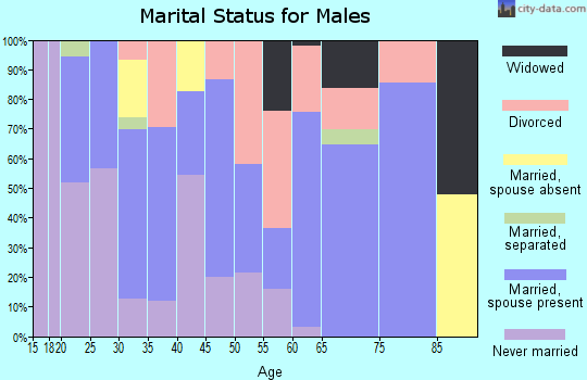 Zip code 85307 marital status for males