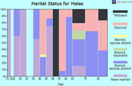 Zip code 85324 marital status for males