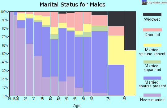 Zip code 85326 marital status for males
