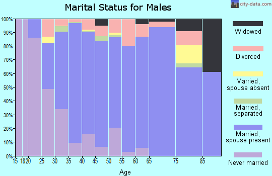 Zip code 85340 marital status for males