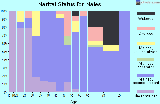 Zip code 85354 marital status for males