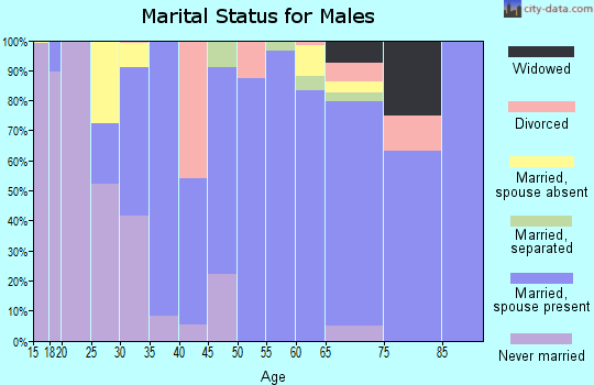 Zip code 85356 marital status for males