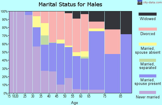 Zip code 85603 marital status for males