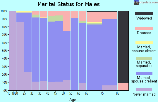 Zip code 85629 marital status for males