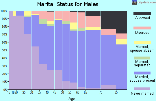 Zip code 85746 marital status for males