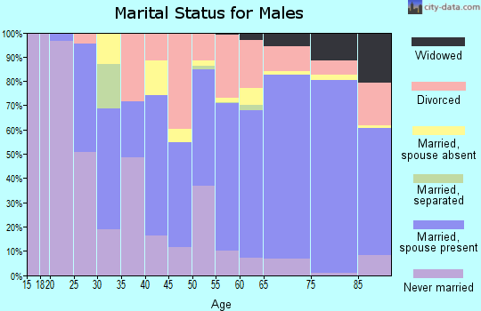Zip code 86303 marital status for males