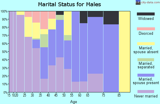Zip code 86507 marital status for males