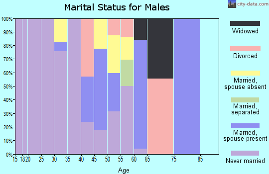 Zip code 87049 marital status for males