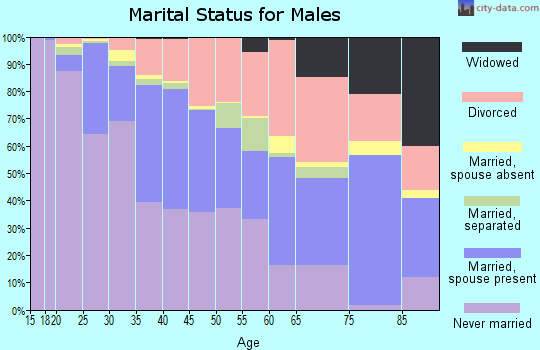 Zip code 87102 marital status for males
