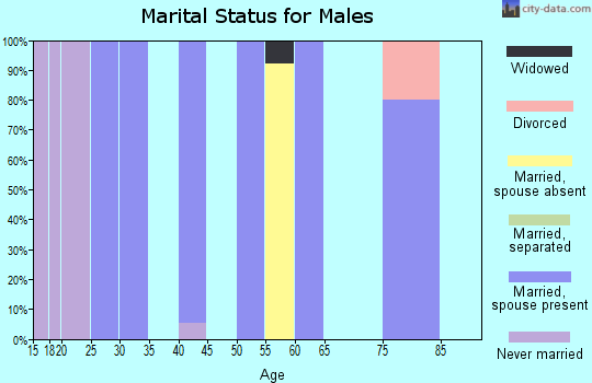 Zip code 87317 marital status for males