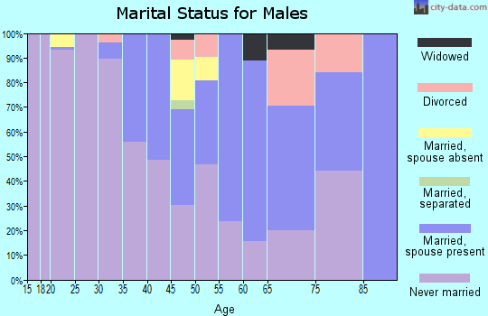 Zip code 87375 marital status for males