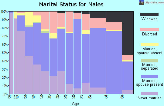 Zip code 87401 marital status for males