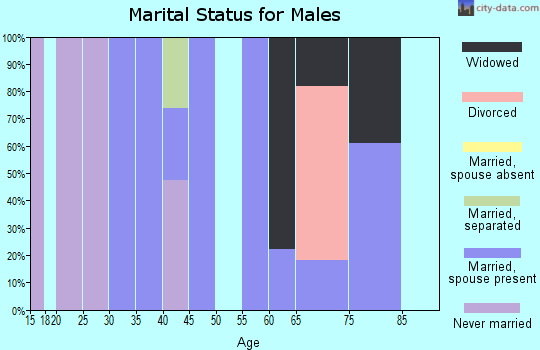 Zip code 87728 marital status for males