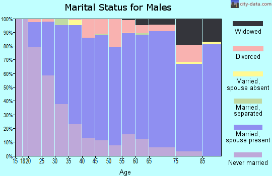 Zip code 88011 marital status for males